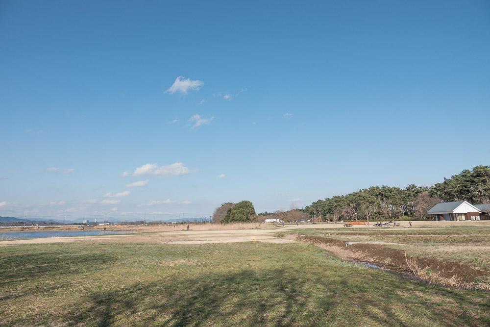 rx10m4 多々良沼公園