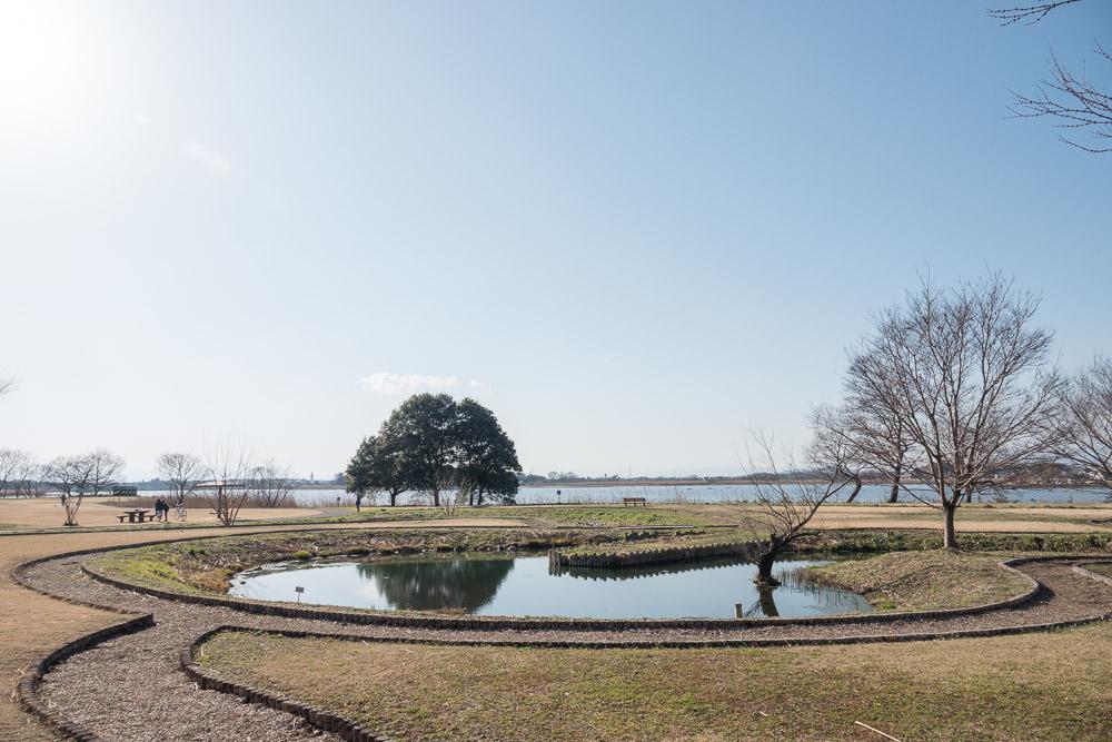 rx10m4 多々良沼公園 池