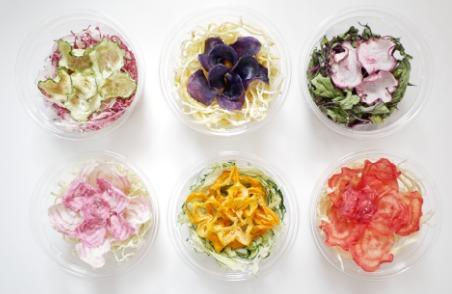 NHK おはよう日本|花のような乾燥野菜